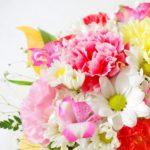 日頃の感謝を花に込めて…母の日の贈り物は花言葉で選びませんか